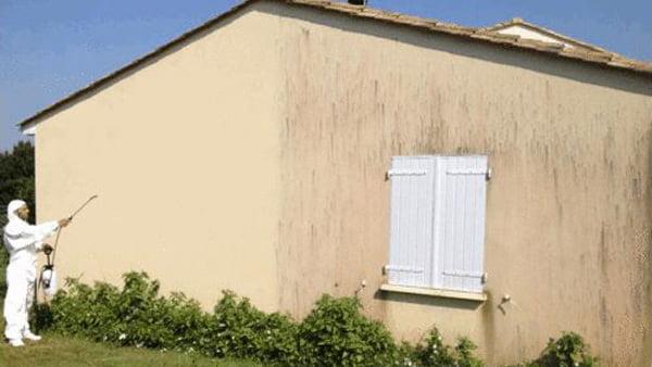 Traitement façade